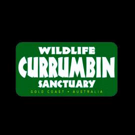Currumbin-Logo